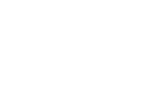 BEST ACTION - Freedom Festival International - MADE IN CHINATOWN